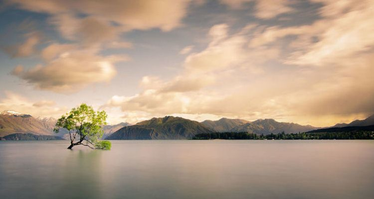 Lake Wanaka Attractions-New Zealand